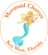 Mermaid Charters